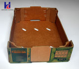 Klimafrucht-u. gewölbter Gemüsekarton-Papierverpackenverpackungs-Tellersegment-Kasten