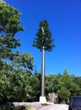 Tour hertzienne d'arbre Bionic en acier de tube