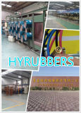 La Cina Factory Produce Ruber Twin Welding Hose con Fitting