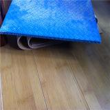 L'anti fibre de verre de glissade feuillette la feuille pour la plate-forme de construction