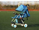 Baby-Spaziergänger, Kinderwagen, Spaziergänger, Buggy am Sommer