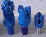 Il tipo ed il formato differenti di inserti hanno morso del carburo di tungsteno