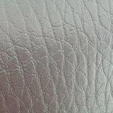 [سغس] دوليّة [غلد مدل] [ز027] جلد نجادة جلد نجادة جلد [بفك] جلد