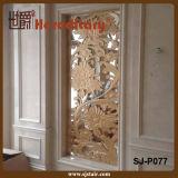 Design elegante Metal Screen per Wall Decoration (SJ-P020)