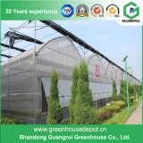 Material de telhado de estufa / cobertura de filme de estufa PE para casa verde