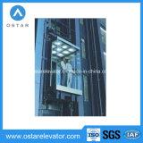 Elevación panorámica diseñada hermosa comercial de la observación del elevador