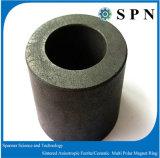 Anelli anisotropi permanenti di ceramica del magnete del ferrito duro
