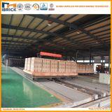 Grande riga della macchina per fabbricare i mattoni dell'argilla di capienza di progetto di chiave in mano automatico del mattone