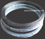 filamento del tungsteno de 0.76m m, alambre de tungsteno Twisted usado en la vacuometalización