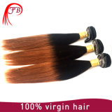 QualitätsOmbre 1b 30# Silky Unprocessed 100% Menschenhaar 2016 Virgin indisches Straight Hair Extensions und Samples Available