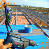 Magazzino d'acciaio prefabbricato economico della costruzione (SSW-1005)