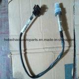 GM Buick Opel Chevrolet를 위한 산소 Sensor (0258010067)