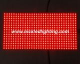 P10 de Binnen & Openlucht Rode Zwart-wit LEIDENE Module van de Vertoning