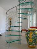 Escadaria do vidro espiral de vidro moderno da alta qualidade das escadas e do aço inoxidável