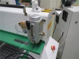 Incisione del legno di taglio di CNC che intaglia macchina