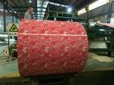 Il fiore progetta l'acciaio decorato PPGI galvanizzato preverniciato stampa dalla Cina