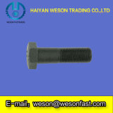 탄소 Steel, Stainless Steel, Brass 또는 Others Hex Bolt 및 Nut