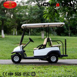 2+2 Seaterのガスのゴルフカート