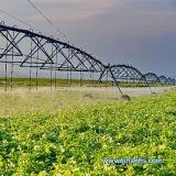 أرض صالح للزراعة ضخم باطنيّة مركزيّ محور [إيرّيغأيشن سستم] لأنّ مزرعة كبيرة