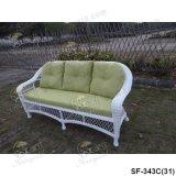 Jeux extérieurs de sofa, meubles de rotin de patio, jeux de sofa de jardin (SF-343)
