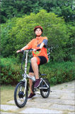 La bici elettrica della montagna della E-Bici da 26 pollici, veicolo, va in bicicletta il motore elettrico