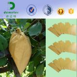水証拠の果樹栽培のための紫外線防止の白いブラウンの木材パルプ紙のマンゴの保護袋