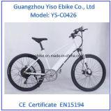 Bafang 후방 모터를 가진 새로운 전기 자전거 중국