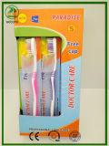 Pakistan-heiße Verkaufs-Zahnbürste mit freier Schutzkappe