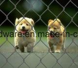 Хорошим гальванизированная ценой загородка звена цепи для животных