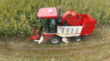Maquinaria da ceifeira do milho de quatro fileiras com a palha nova que esmaga o dispositivo