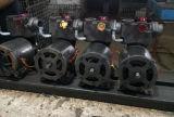 Pompe à eau électrique auto-amorçante de la série PS-126