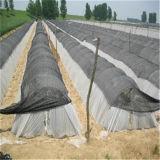 Maagdelijke breide HDPE van 100% UV Zware Groene Netto Schaduw