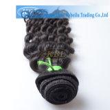 Remyアフリカ系アメリカ人のためのブラジルの深い巻き毛のOmbreの毛の織り方