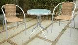 Insieme esterno dei bistrot della tavola rotonda della mobilia del giardino