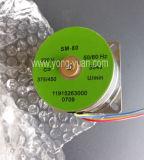 Qualitäts-Minimotor für elektrische Stellzylinder (SM-80)