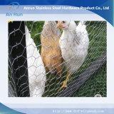 Cerca de fio do ferro da gaiola de galinha
