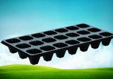 der 540X280mm Hersteller geben direkt verschiedene Zellen schwarze PS-Plastikpflanzenschule-Tellersegmente für Pflanzensämlinge an