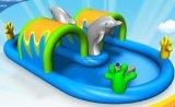 환호 오락 돌고래 팽창식 완벽한 수영장 물