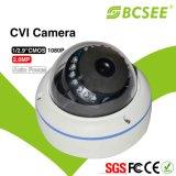 "1/2.9 "" Vandalproof Koepel Cvi van Pixelplus CMOS 2.0/1080P Camera"