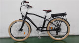 Woman를 위한 새로운 Model Cheap Electric Bike