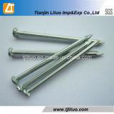Baumaterial-elektrischer galvanisierter konkreter Nagel