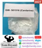 Poudre crue populaire de Sarm Cardarine (GW-501516) de construction de corps