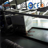Panneau décoratif de marbre artificiel de PVC de panneau de fabrication de machine de PVC de panneau de machine de marbre de fabrication faisant la machine