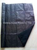 Tessuto Weed della stuoia perforata ago tessuta PE dei pp/coperchio al suolo/di abbellimento
