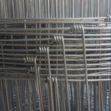 Frontière de sécurité fixe de noeud de cerfs communs de blocage de boucle pour la ferme d'animaux