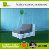 Muebles al aire libre del patio de la rota moderna del jardín