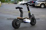 특대 뚱뚱한 타이어 Ce/ECE를 가진 도로 Foldable 전기 스쿠터 소형 스쿠터 또는 먼지 E 스쿠터 떨어져 2000W 또는 1600W