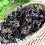 Het natuurlijke Zwarte Uittreksel Van uitstekende kwaliteit van de Paddestoel voor het Supplement/de Polysacchariden van het Voedsel