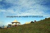 Het kamperen Tenten van de Familie van de Tenten van de Apparatuur de Openlucht voor Verkoop