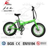 """E-Bicyclette de batterie de Li-Lion d'alliage d'aluminium du champ de neige 20 """" avec du CE (JSL039K)"""